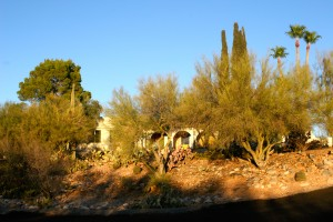 Front desert and our house in background